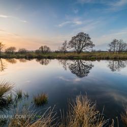rustige weerspiegeling na een zonnige lentedag in Rouveen.