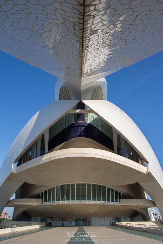 Palau de les Arts Reina Sofía - Palau de les Arts Reine Sofía in Valencia, Spanje. Dit is een operahuis wat staat in de Stad van Kunsten en Wetenschap
