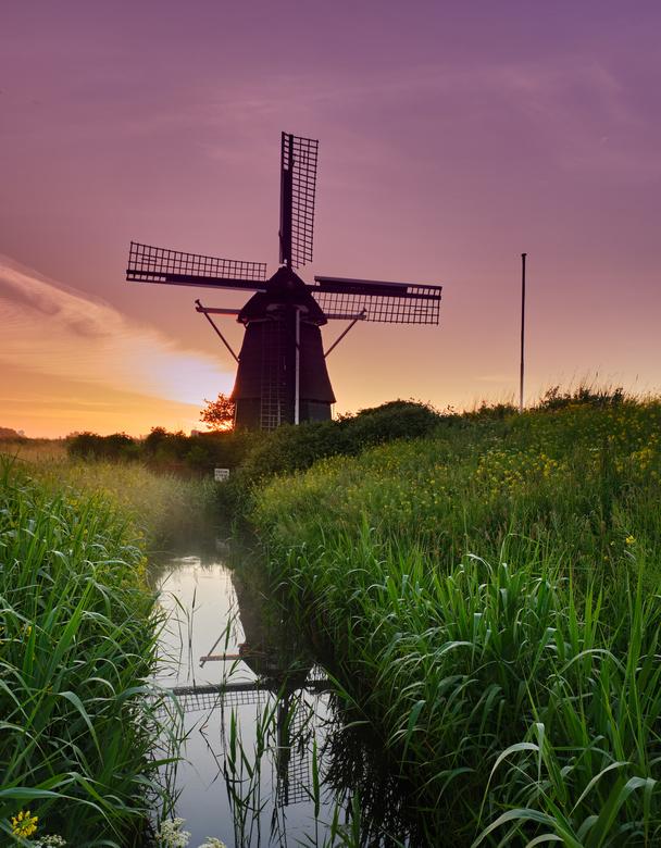 De Hommel - Een heerlijke zonsopgang op een mistige ochtend