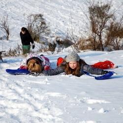 DSC_8830xx.jpgLekker in de sneeuw liggen..