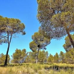 Spaans landschap....