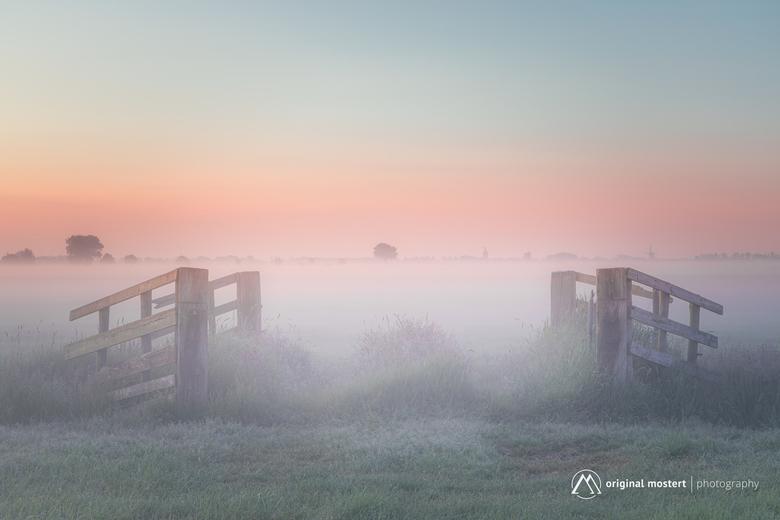 Walking through the fog... - Walking through the fog...