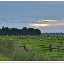 Mooi Friesland - Smalle Ee - Butendiken