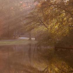 Herfst-Sonsbeekpark.1