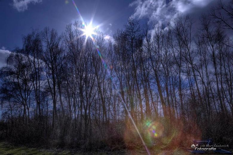 lensflare - Hdr van de zon met bomen<br /> <br /> met als leuke bijkomstigheid een mooie lensflare