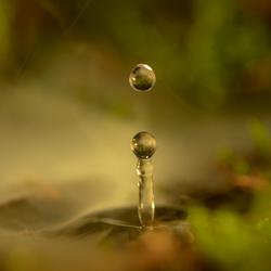 Swampy Droplet