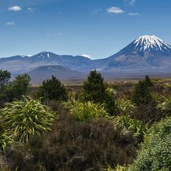 Ngauruhoe en Tongariro vulkanen; Mt Doom
