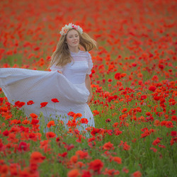 louna in de poppies