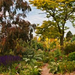 RHS Gardens (3)