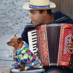 Mooie muziek in Porto