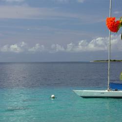 Bonaire in november