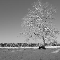 Sneeuw zwart/wit