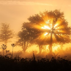 Herfstmorgen in Frankrijk