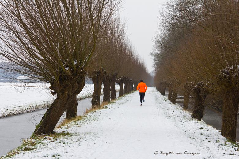 Dutch sunday morning - Een typisch zondag ochtend in de Nederlandse polder in de winter