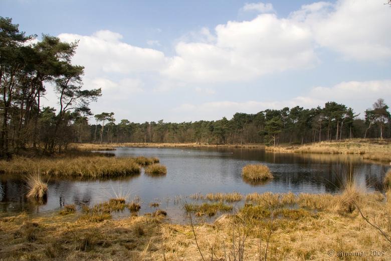 Hatertse Vennen - Weer eens in dit mooie natuurgebied geweest. Prachtig daar, heerlijk rustig en lekker gewandeld.<br /> <br /> Groetjes, Marianne