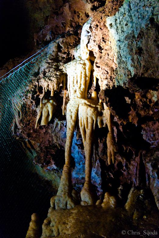 """Jules Het skelet van St-Cézaire - In de druipsteengrotten van St-Cézaire woont Jules. Dit is een in de loop van de tijd door de natuur gevormd """"s"""
