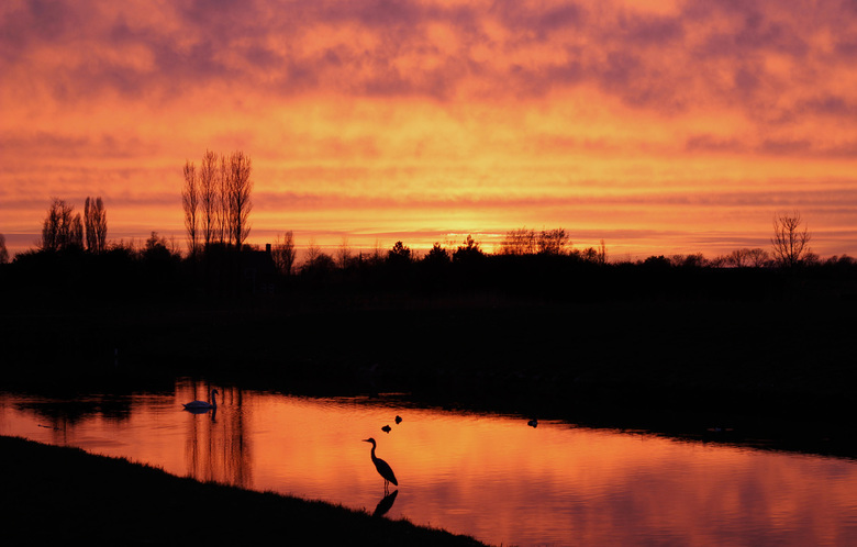Nederland op z'n best - Nederland op z&#039;n best en op z&#039;n mooist, puur natuur in de polder!<br /> <br /> Voor de zonsondergang hoef je niks
