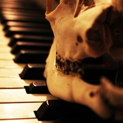 De muziek en de dood