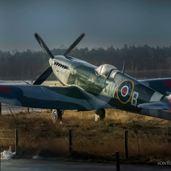 Early morning spitfire