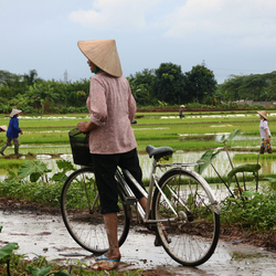Buiten Hanoi