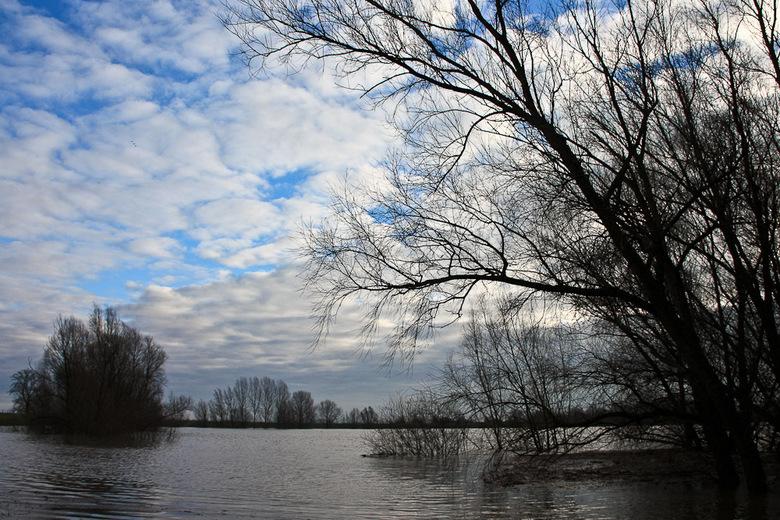 rivierenland 1 - Vanmorgen heel vroeg op pad gegaan om foto's te maken van onze rivieren. na de zonsopgang duurde het nog een tijd voor er even e