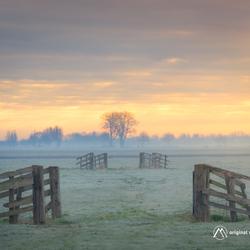 Crisp morning light...