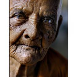 india portret 2005