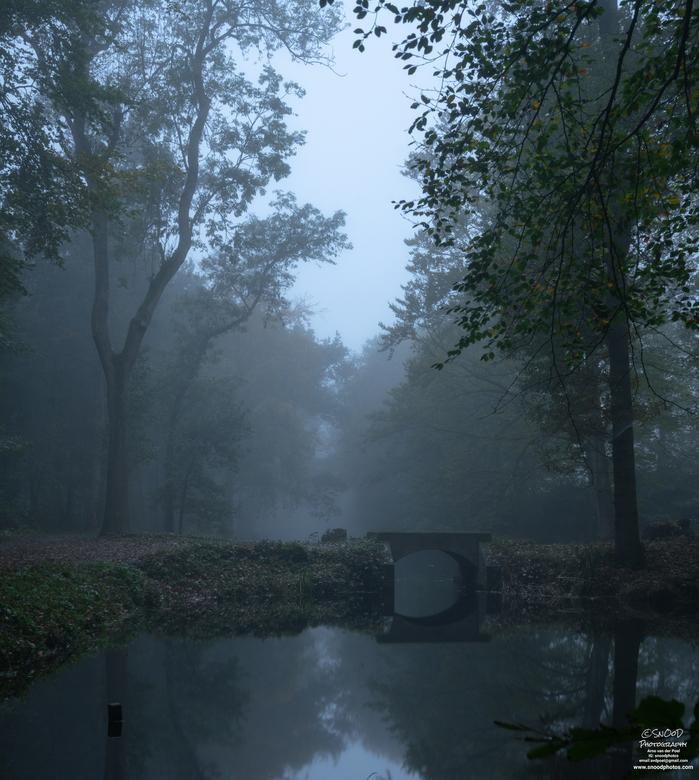Misty bridge -