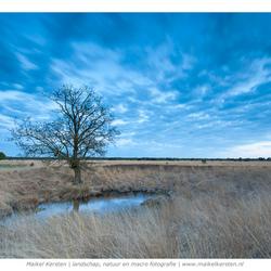 Blue sky | De Kampina | Boxtel