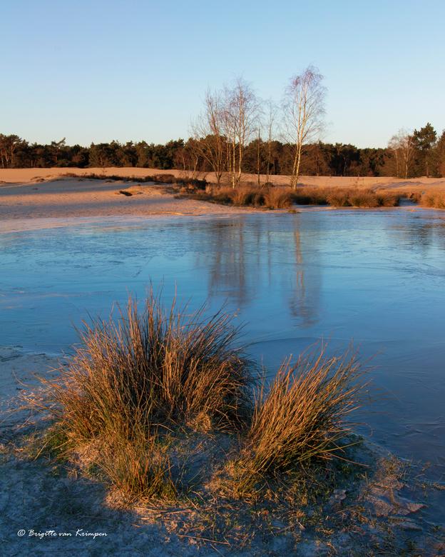 On frozen ground