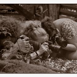 Paparazzi in het bos
