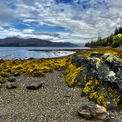 Scotland Loch Eil