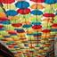 Dak van paraplu's