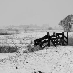 Wintersfeer 25/01/2010