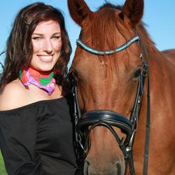paarden portret