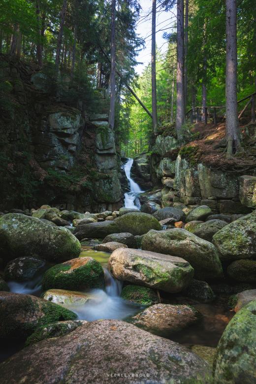 Natural Splendor  -