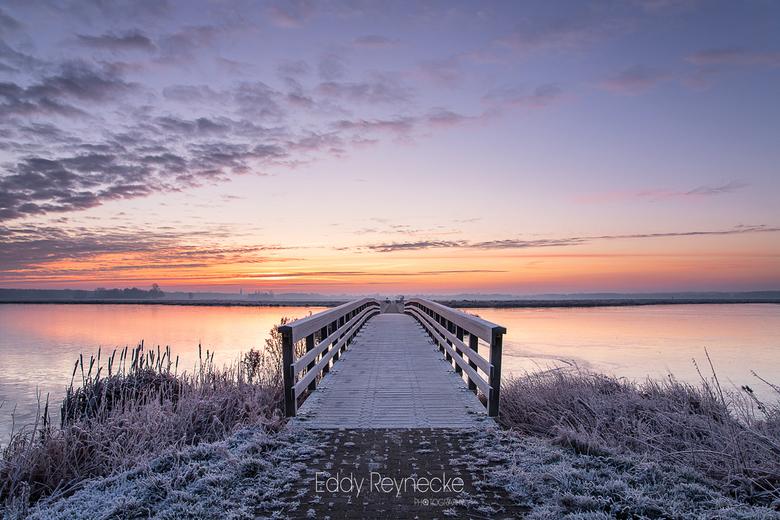WINTER COLORS - Wat een heerlijk winters sfeertje tijdens de zonsopkomst in natuurgebied 't Roegwold te Groningen.