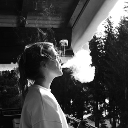 Rook - Königsleiten