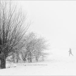 Winter 2013 in Zeeland