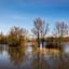 Hoog water in natuurgebied Munnikenland
