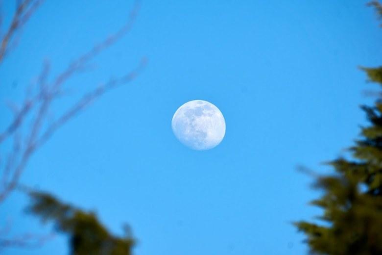 Bijna volle maan overdag -