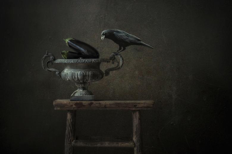 That's why birds don't fly - Bij deze foto is een textuur laag toegepast en is later de vogel ingevoegd.De originele foto bestaat uit het bankje, met