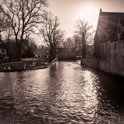 Minnewater te Brugge