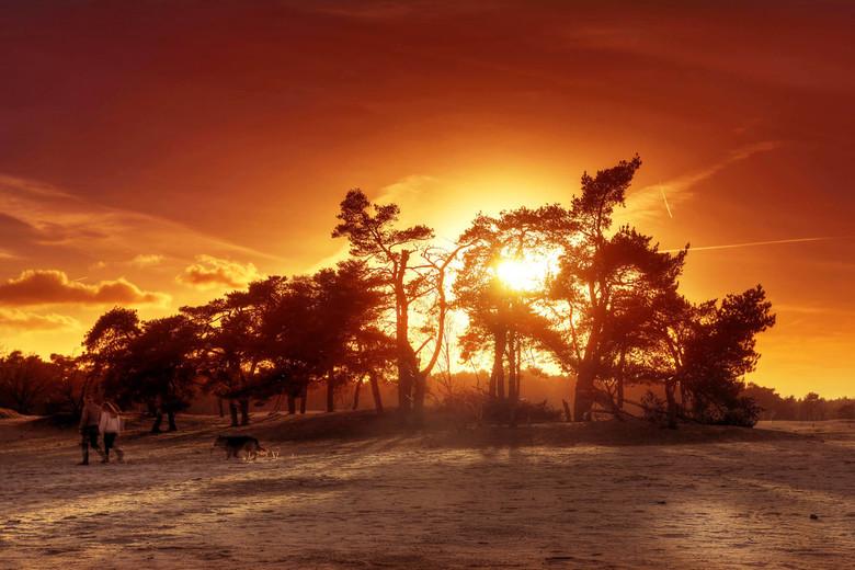 ZL4A0056_57_58_59_60_mailen Enhancer - Prachtige zonsondergang in de Loonse en Drunense duinen.