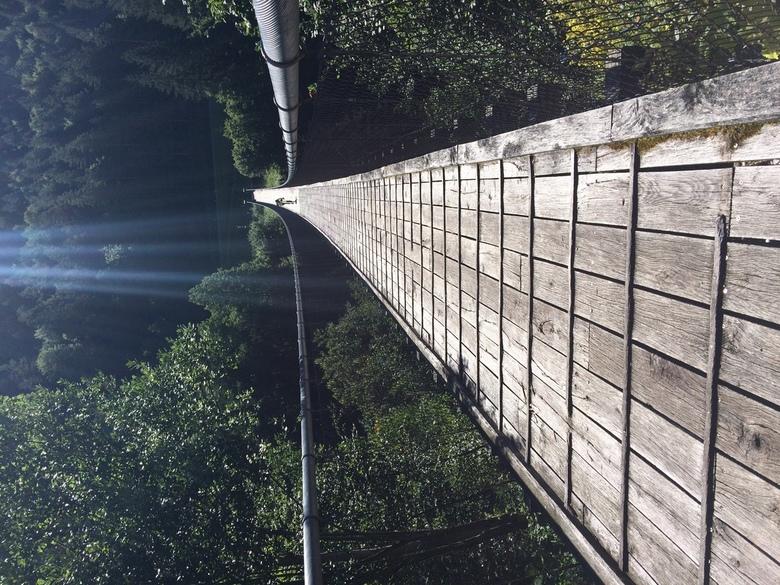 Ik heb hoogtevrees - Op de fiets van Salzburg naar Slovenië kwamen we tussen Lavamünd en Bleiburg deze prachtijge hangbrug tegen.<br /> De fietser di