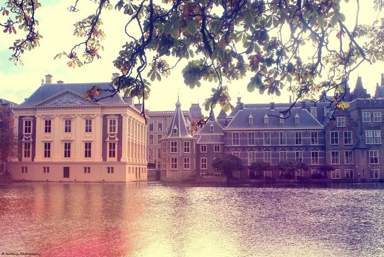 Hofvijver, Den Haag -