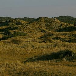 duinen bij Hargen