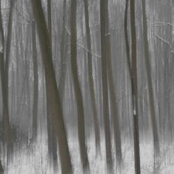 spelen in de sneeuw 3