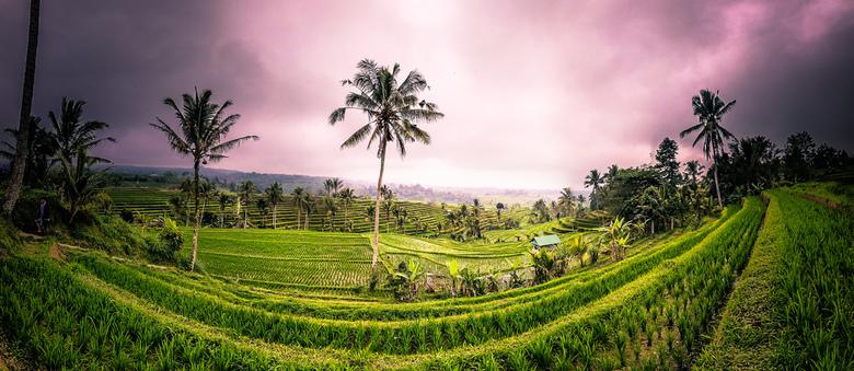Jatiluwih Rice Terraces - Jatiluwih Rice Terraces, een van de parels van Bali. Zeer mooie plek om foto's te schieten