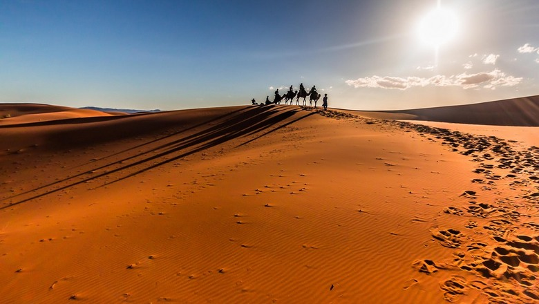 Travelling the old way - Travelling the old way on camel back or actually, because of the one bump, on a dromedary. The sun is hot, very hot, the sand